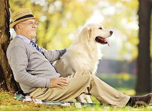 Conheça os direitos da pessoa idosa segundo o Estatuto do Idoso (Lei n. 10.741)