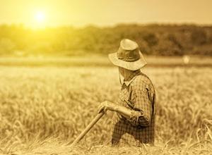 Fixada tese sobre especialidade do trabalho por exposição à fonte natural de calor
