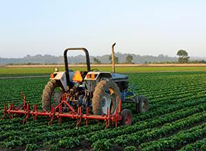 Receita Federal orienta acerca de adesão ao Programa de Regularização Tributária Rural