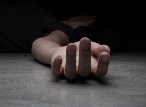 Ministro repudia tese de legítima defesa da honra em caso de feminicídio